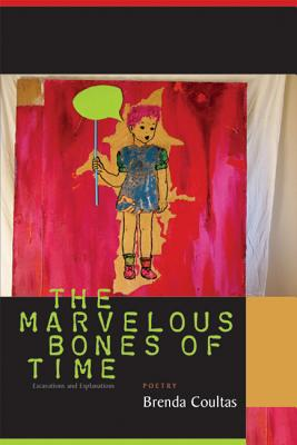 Image for MARVELOUS BONES OF TIME