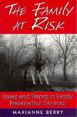 Image for The Family at Risk: Issues and Trends in Family Preservation Services (Social Problems and Social Issues)