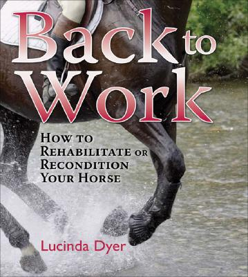 Image for Back to Work: How to Rehabilitate or Recondition Your Horse