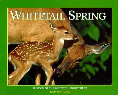 Whitetail Spring: Seasons of the Whitetail (Seasons of the Whitetail/John J. Ozoga, Bk 3), Ozoga, John J.