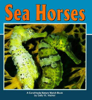 Image for Sea Horses (Nature Watch)