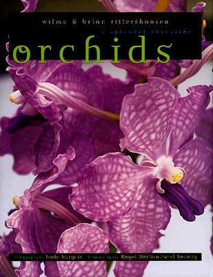 Orchids, Rittershausen, Wilma; Burgess, Linda; Rittershausen, Brian