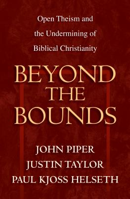 Image for Beyond the Bounds