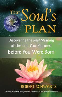 Image for Your Soul's Plan: Discovering the Real Meaning of the Life You Planned Before You Were Born