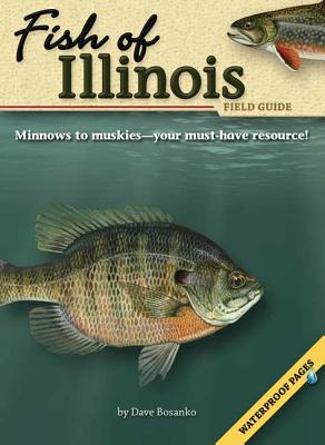 Image for Fish of Illinois Field Guide (Fish Identification Guides)