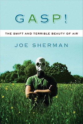 Image for Gasp! The Swift and Terrible Beauty of Air