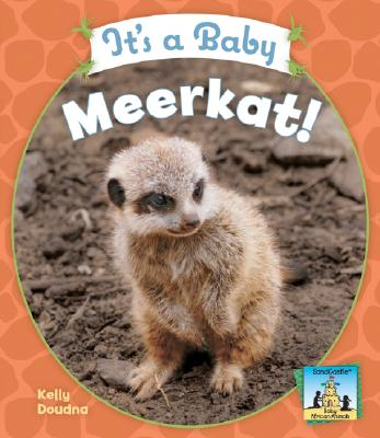It's a Baby Meerkat! (Baby African Animals), Doudna, Kelly