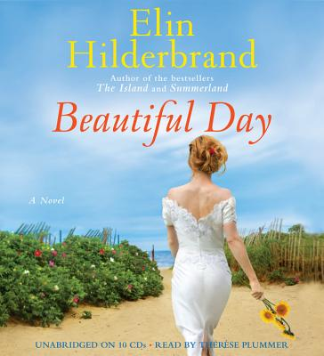 Image for Beautiful Day: A Novel