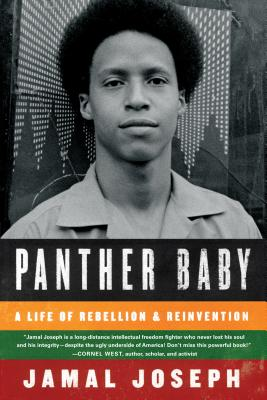 Image for Panther Baby