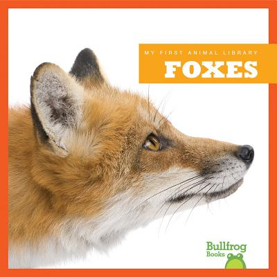 Foxes (Bullfrog Books: My First Animal Library), Martha E. H. Rustad