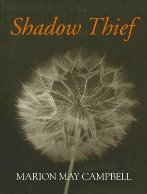 Image for Shadow Thief