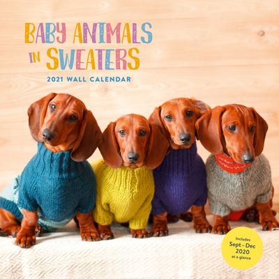 Image for Baby Animals in Sweaters 2021 Wall Calendar: (Cutest Animals Monthly Calendar, Wall Calendar of Cuddly Animals Wearing Sweaters)