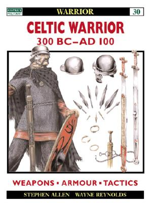 Image for Celtic Warrior: 300 BC-AD 100