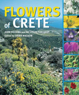 Image for Flowers of Crete