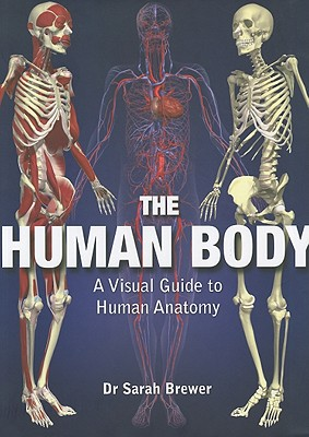 The Human Body: A Visual Guide to Human Anatomy, Dr. Sarah Brewer (Author)
