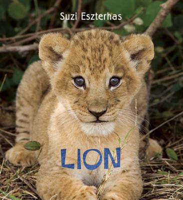 Eye on the Wild: Lion, Suzi Eszterhas (Photographer)