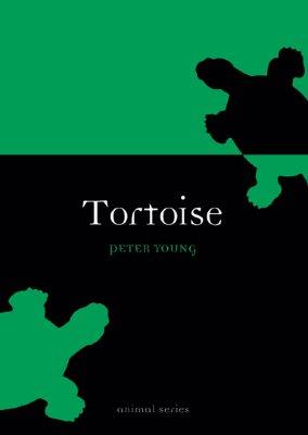 Image for Tortoise (Animal)