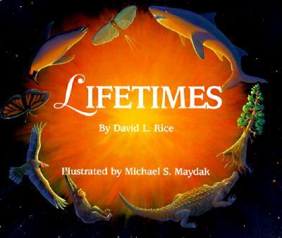 Image for Lifetimes