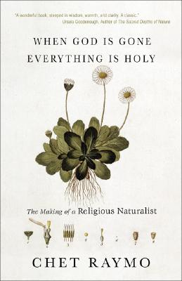 When God Is Gone, Everything Is Holy: The Making of a Religious Naturalist, Raymo, Chet