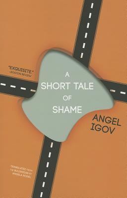 Image for A Short Tale of Shame
