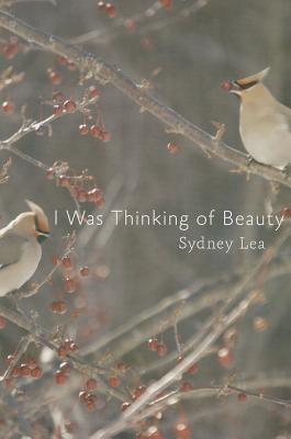 I Was Thinking of Beauty, Lea, Sydney