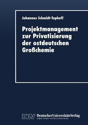 Image for Projektmanagement zur Privatisierung der ostdeutschen Großchemie (German Edition)