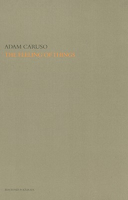 Image for The Feeling of Things By Adam Caruso