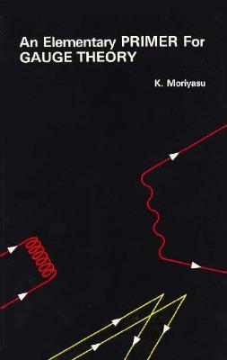 An Elementary Primer for Gauge Theory, Moriyasu, K.